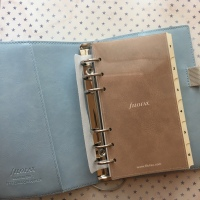 Filofax Domino Soft